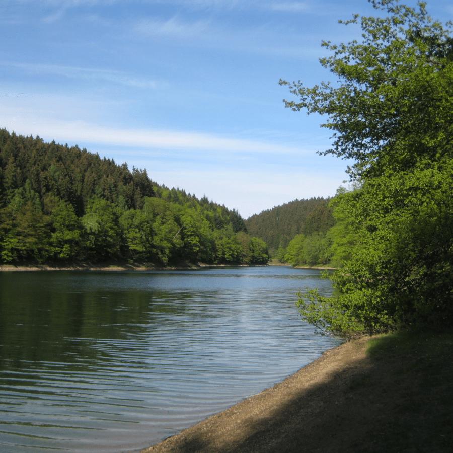 Wildnis-Wasser